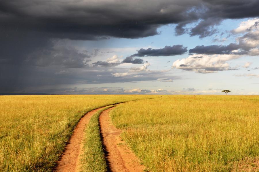 Tepro contribuye a la modernización agrícola sostenible en Senegal