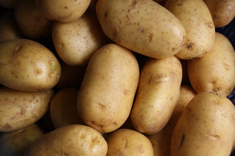 ¿Por qué la patata española es la mejor?