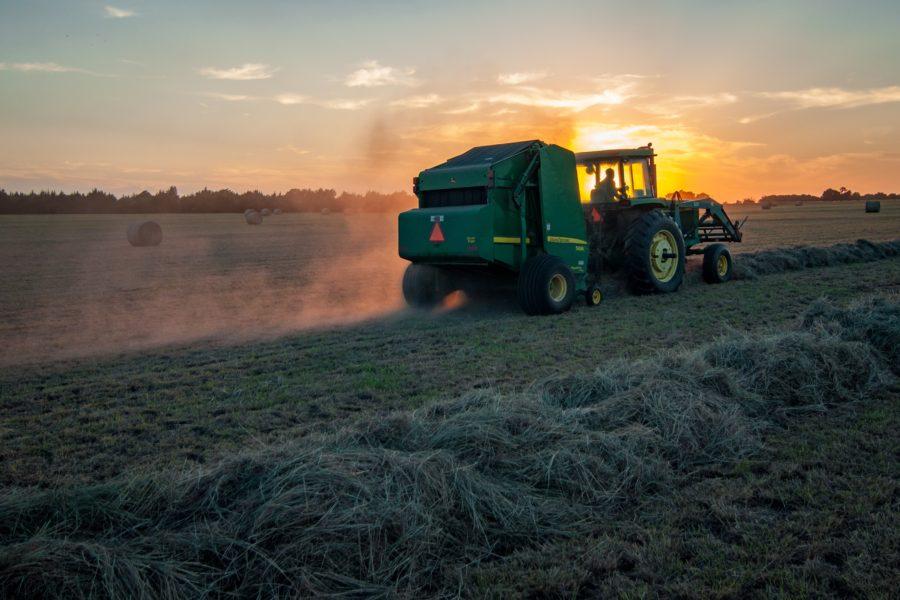 Mejorando la sostenibilidad con abonos orgánicos