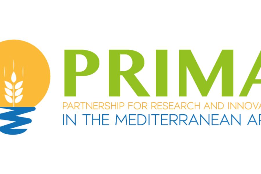 El proyecto MEDWATERICE entre los seleccionados del programa PRIMA