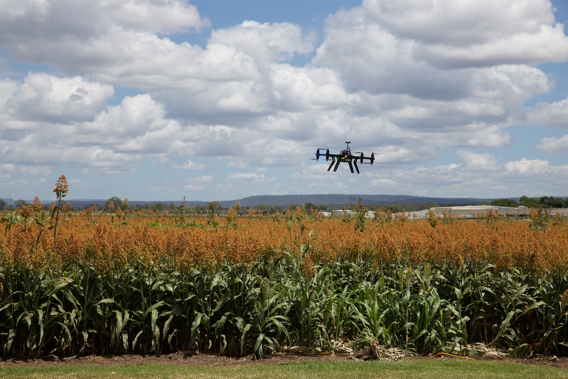 Los objetivos de la agricultura de precisión