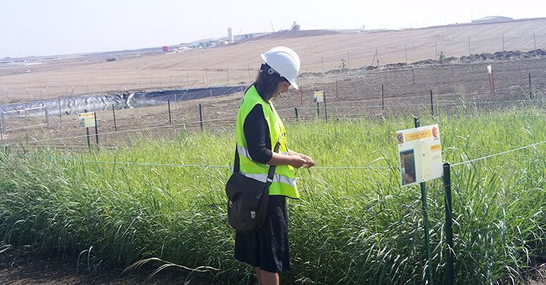 Gestión Agrícola, trabajo de campo proyecto de I+D+i