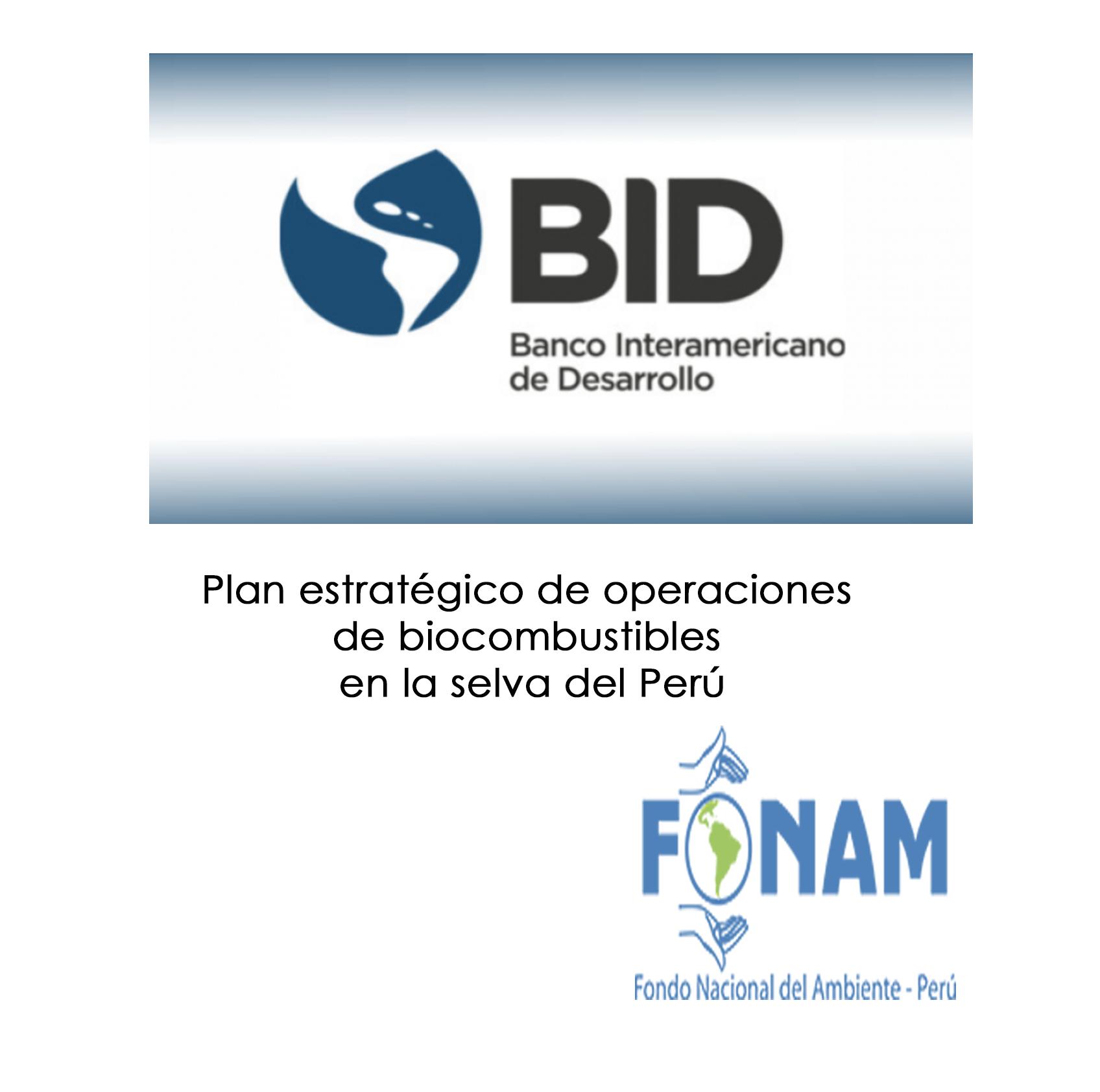 STRATEGIC OPERATIONAL BIOFUELS PLAN IN THE PERUVIAN FOREST REGIONS